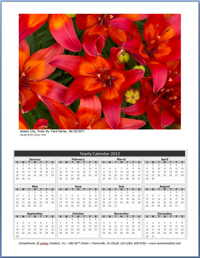 Loukas Medical Inc – Sample Calendar